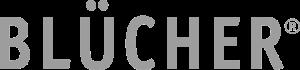 BLUCHER-name_gray